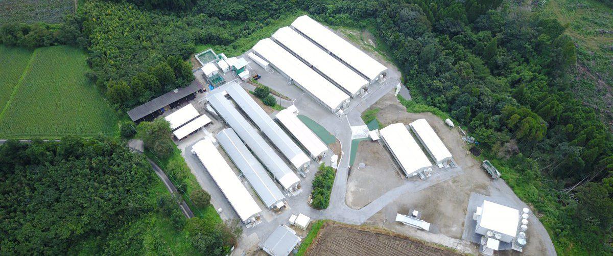 畜産施設建設